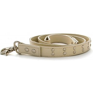Gladiator Dog Lead in Cream
