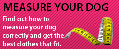 How to measure your dog with Puchi