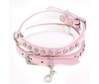 Candy Floss Dog Collar