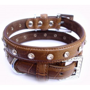 Choc Croc Collar & Lead Set