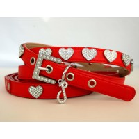 Fuzzy Love Collar & Lead Set