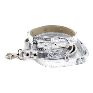 Platinum Collar & Lead Set