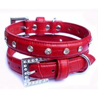 Poppy Croc Dog Collar