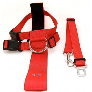 Car Seat Belt & Harness (Red)