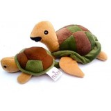 Teeny Turtle and Mumma Set Pet Toys