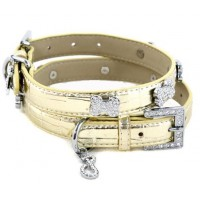 Dollar Dog Collar