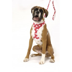 Heart Softy Harness & Lead Set