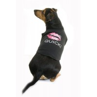 Kiss Me Quick Dog T-Shirt