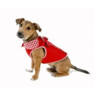 Rouge Harness Dog Coat