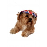 Doggie Union Jack Baseball Cap