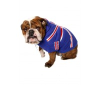 Union Jack hoodie (Limited Edition)