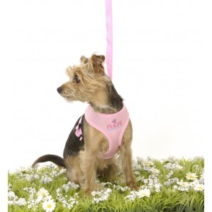Waffle Dog Harness and Lead in Pink