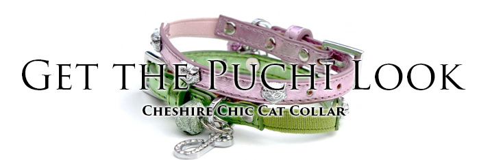 Cheshire Chic Cat Collar