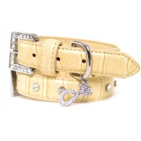Golden Croc Dog Collar