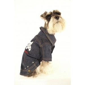 Jean Jeanie Denim Jacket